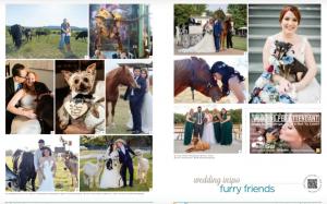 magazine photo of dogs, llamas and horses at weddings
